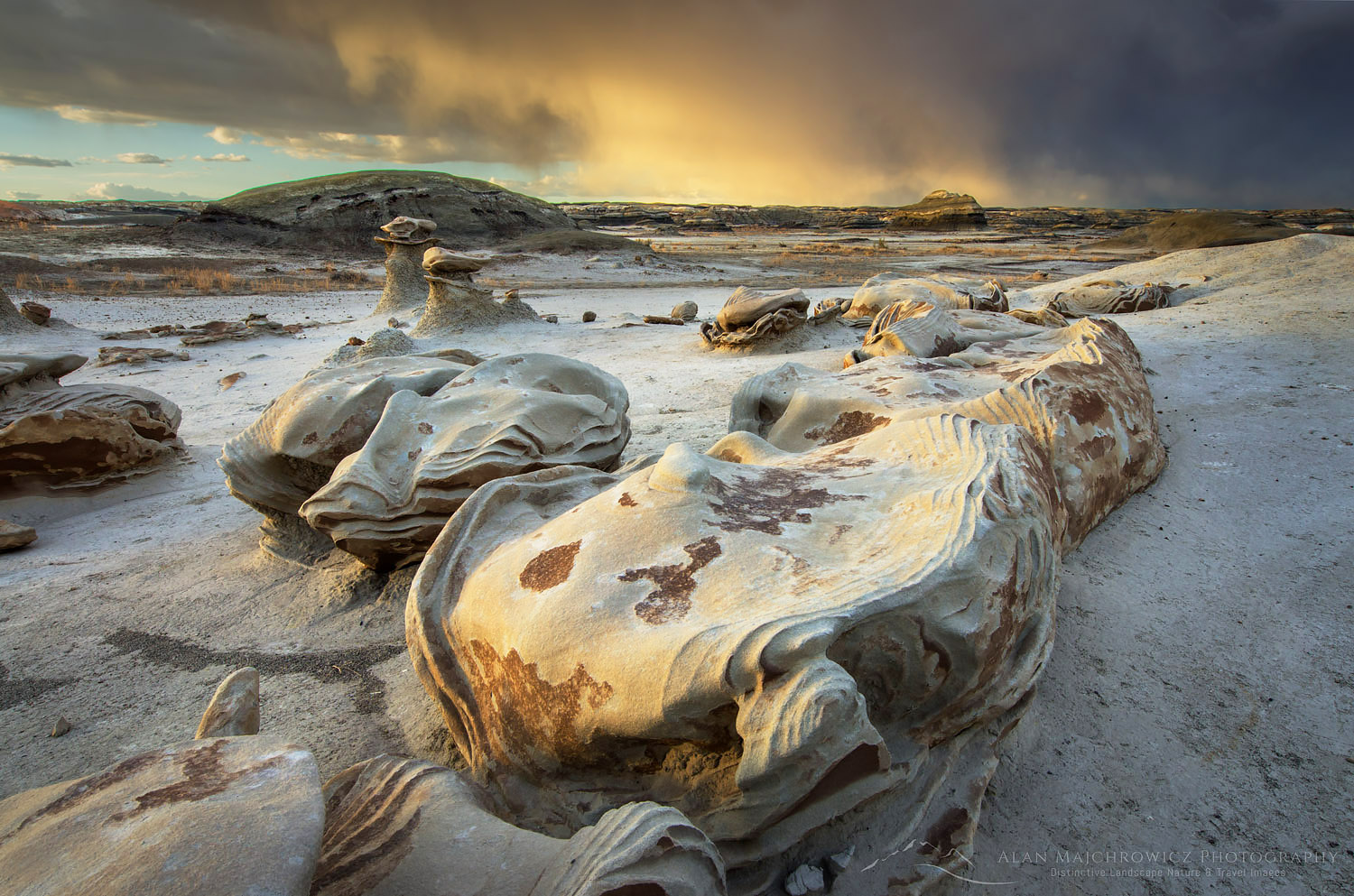 Egg Factory Bisti Badlands, New Mexico