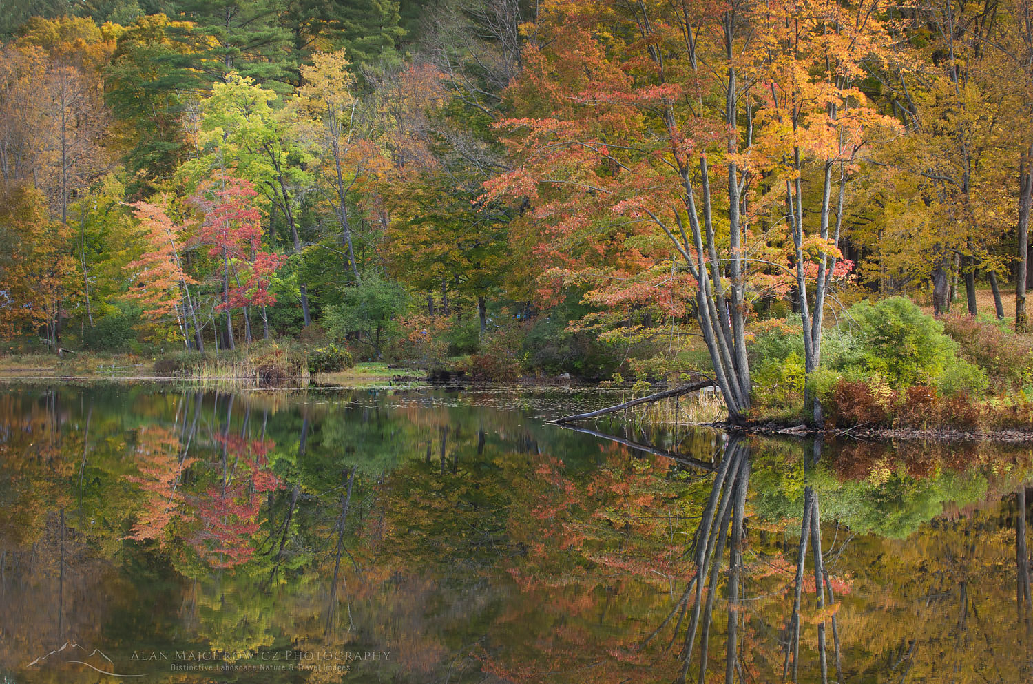 Vermont fall foliage reflection Lake Pauline