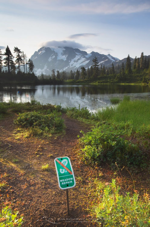 Trail repair sign at Picture Lake Mount Shuksan