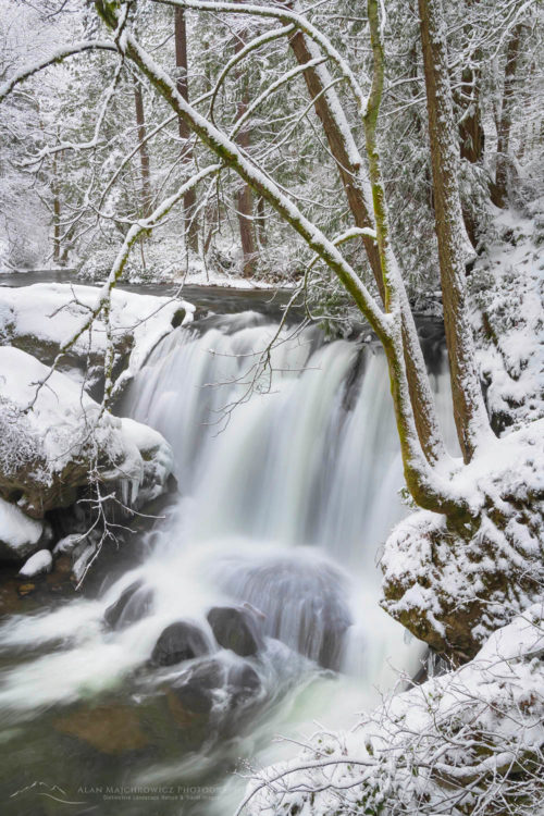 Whatcom Falls Bellingham Washington