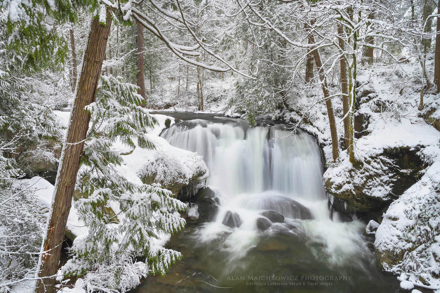 Whatcom Falls Bellingham Washington Whatcom Falls Winter Photography