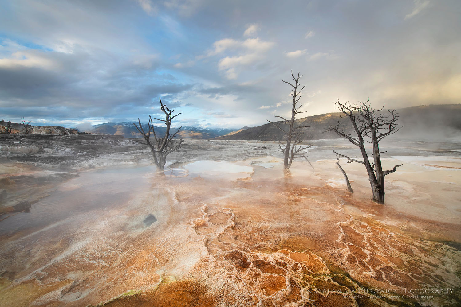 Mammoth Hot Springs Yellowstone National Park New Images Yellowstone Teton Glacier