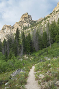 Redfish Creek Canyon Trail Sawtooth Mountains Idaho Baron Lakes Sawtooth Mountains