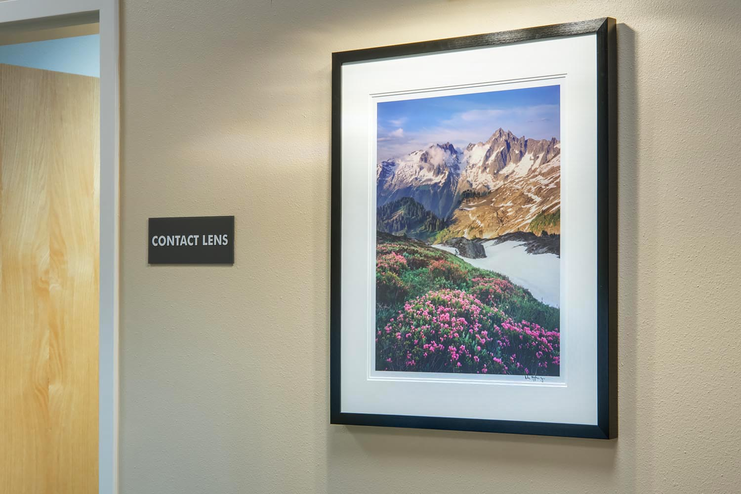Mount Baker Vision Clinic Fine Art Installation